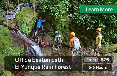 Off-the-beaten-path-el-Yunque-rainforest